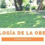 Psicología de la obesidad. Entrevista a la psicóloga Andrea Arroyo.